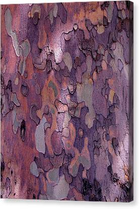 Tree Abstract Canvas Print by Rona Black