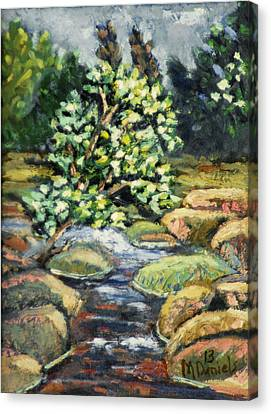 Tree And Stream Canvas Print by Michael Daniels