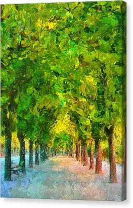 Tree Avenue In The Vienna Augarten Canvas Print