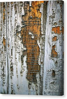 Tree Bark 2 Canvas Print
