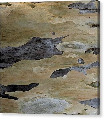 Tree Bark I Canvas Print by Ben and Raisa Gertsberg