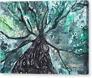 Tree Branches Above Canvas Print by Tara Thelen