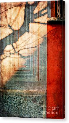 Tree Branches Shadow On Wall Canvas Print by Silvia Ganora