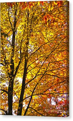 Tree Brightness Canvas Print by Nur Roy
