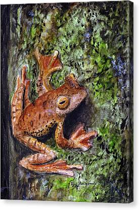 Spring Peepers Canvas Print - Tree Clinger by Ryan Lamoureux