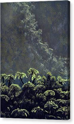 Tree Ferns Canvas Print by Richard Bizley