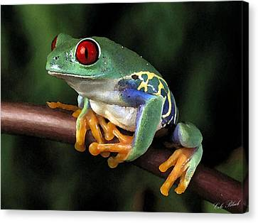 Tree Frog Canvas Print by Cole Black