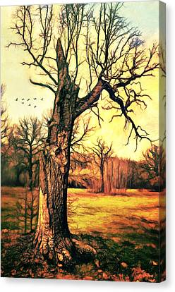 Tree Canvas Print by Gynt