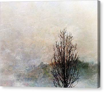 Tree Impression Canvas Print by Bruce Rolff