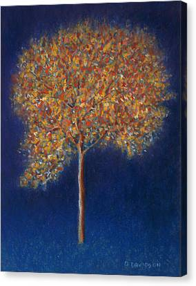 Tree In Blossom Canvas Print by Peter Davidson