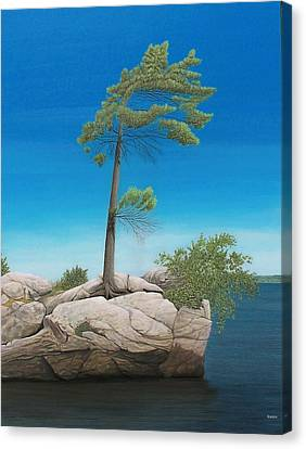 Tree In Rock Canvas Print by Kenneth M  Kirsch