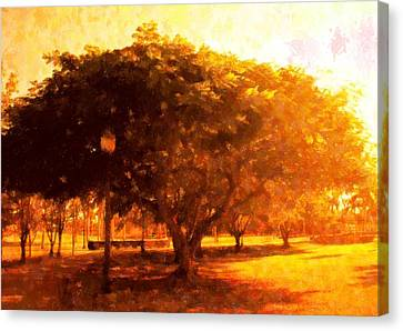 Tree In The Park Canvas Print by Florene Welebny