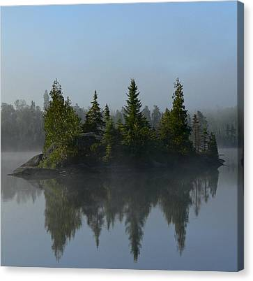 Tree Island Canvas Print by Steve Schwarz
