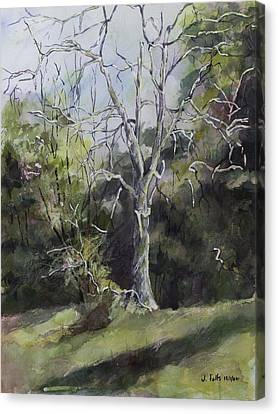 Tree Beside The Road Canvas Print by Janet Felts