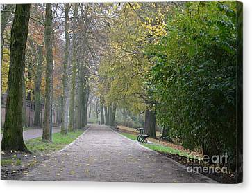 Canvas Print featuring the photograph Tree Lined Path In Fall Season Bruges Belgium by Imran Ahmed