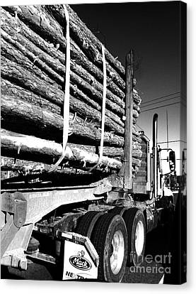 Tree Logger Canvas Print