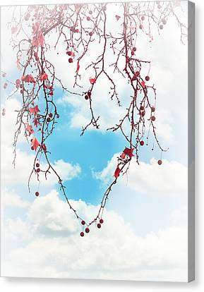 Tree Lover Canvas Print by Debi Bishop