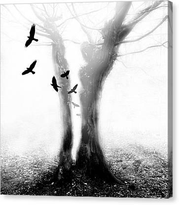 Canvas Print featuring the photograph Tree by Mariusz Zawadzki
