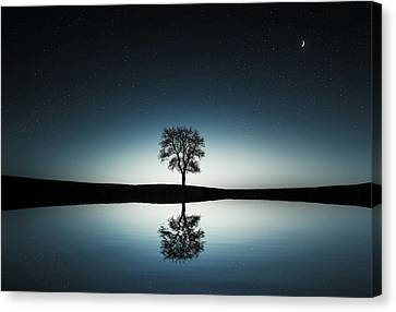 Tree Near Lake At Night Canvas Print by Bess Hamiti