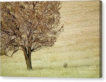 Tree Canvas Print by Nur Roy