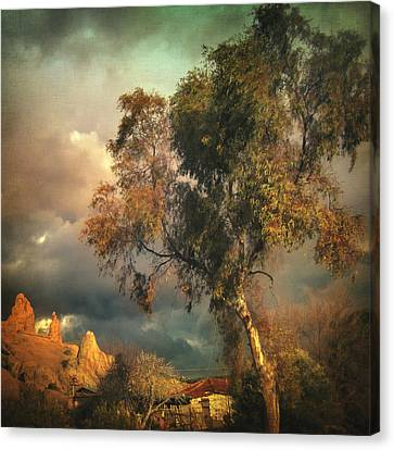 Tree Of Confusion Canvas Print by Taylan Apukovska