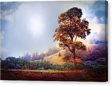 Tree Of Dreams Canvas Print by Debra and Dave Vanderlaan