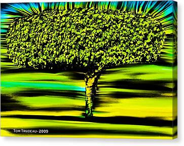 Culinary Canvas Print - Tree Of Knowledge by Tommi Trudeau