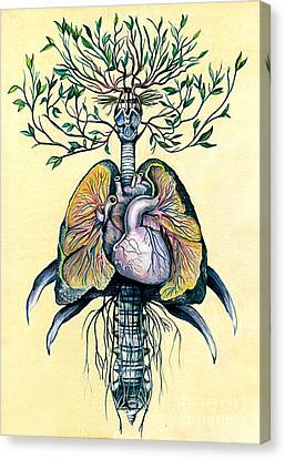 Circulatory System Canvas Print - Tree Of Life by Michael Volpicelli