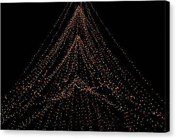 Tree Of Lights Canvas Print