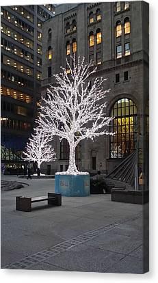 Tree Of Lights I Canvas Print