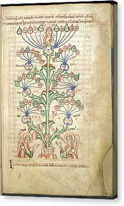 Tree Of Virtues Canvas Print by British Library