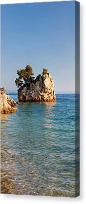 Tree On A Rock In The Sea, Brela Canvas Print