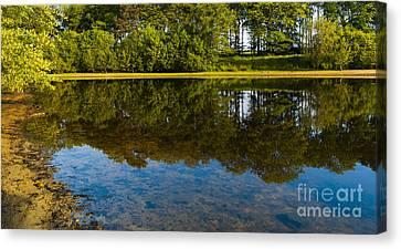 Tree Reflections Canvas Print by Svetlana Sewell