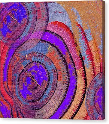 Tree Ring Abstract 2 Canvas Print by Tony Rubino
