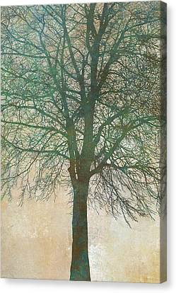 Tree Silhouette II Canvas Print by Cora Niele