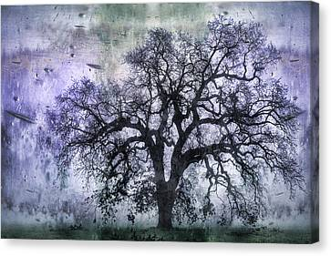 Tree Silhouette In Purple Canvas Print by Carol Leigh