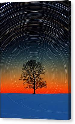 Canvas Print featuring the photograph Tree Silhouette With Star Trails by Larry Landolfi