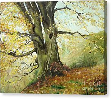 Canvas Print featuring the painting Tree by Sorin Apostolescu