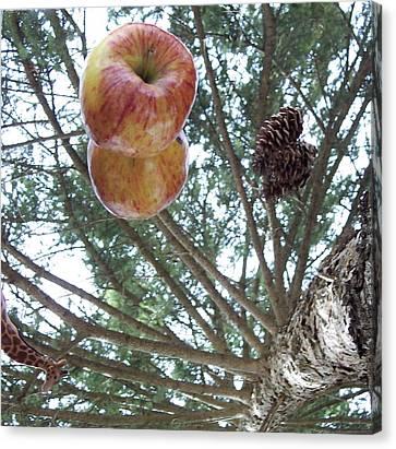 Tree Spiral Canvas Print