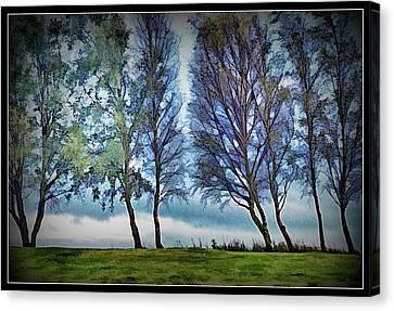 Sombre Canvas Print - Tree Study 2 by John Lynch