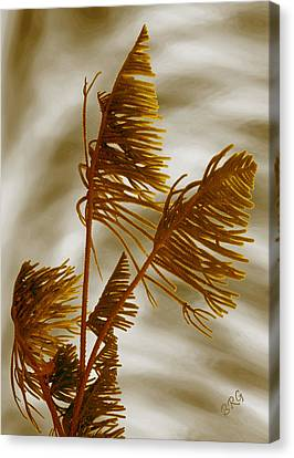 Tree Top Canvas Print by Ben and Raisa Gertsberg