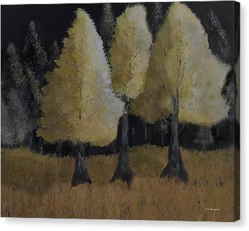 Tree Trio Canvas Print