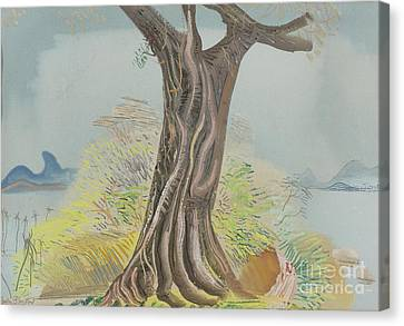 Tree Trunk Canvas Print by Celestial Images