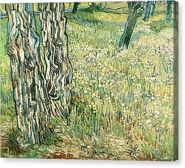Tree Trunks In Grass Canvas Print by Vincent van Gogh
