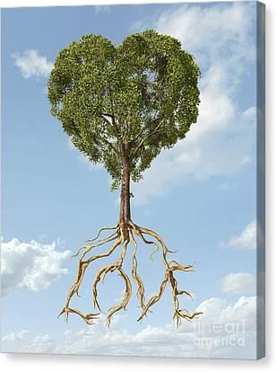 Tree With Foliage In The Shape Canvas Print by Leonello Calvetti