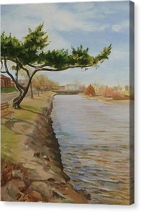 Tree With Lake Canvas Print