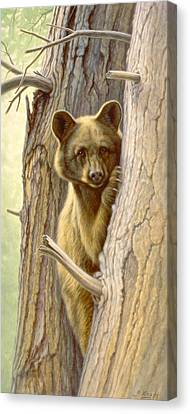 Treed Canvas Print by Paul Krapf