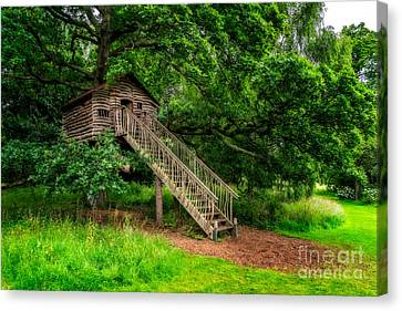 Treehouse Canvas Print by Adrian Evans