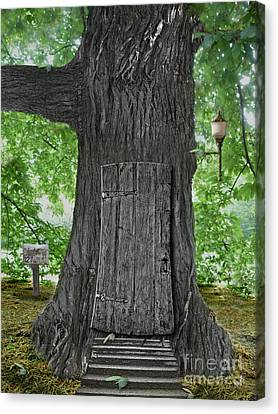 Treehouse Door Canvas Print by Mike Agliolo