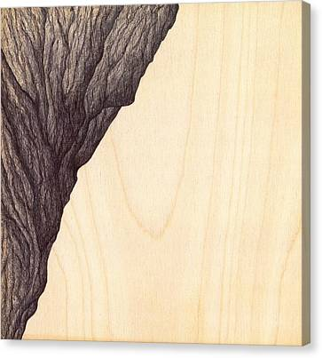 Canvas Print featuring the drawing Treerock  by Giuseppe Epifani